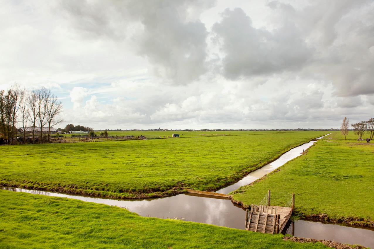 Afbeeldingsresultaat voor polder